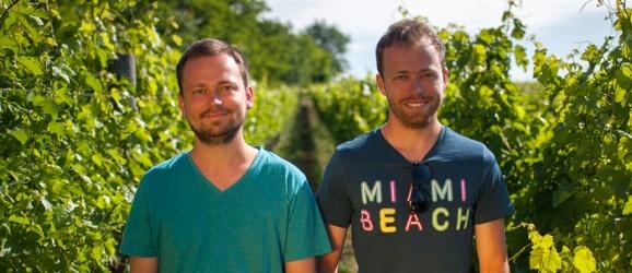 vinarstvo-berta-vinoguru
