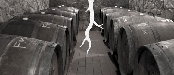 Vinárstvo Magula