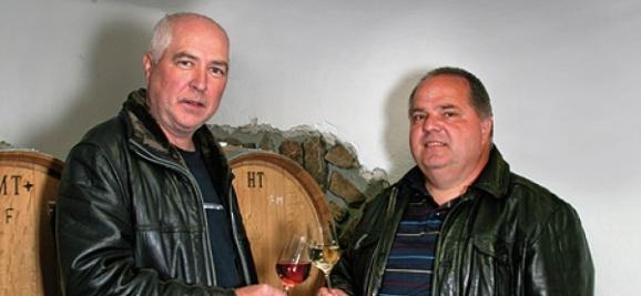 cintavý pisarčík vinárstvo