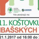 kostovka-limbasskych-vin-title