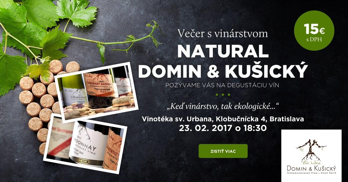 Večer s vinárstvom Víno Natural Domin & Kušický