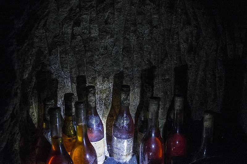 tokaj_underground_vina