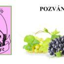 Výstava vín Cífer 2017 - výsledky