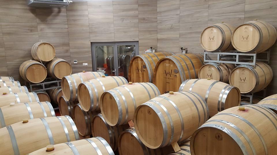 vins_winery_barikove_sudy