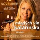 svatokatarinska_ochutnavka_vin_2017_banner
