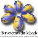 Effervescents du Monde 2017 - výsledky