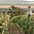 wine_trip_strekov_2018_1